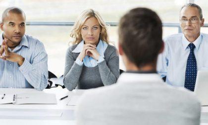 Offerte di lavoro: il Comune di Cremona recluta segretari