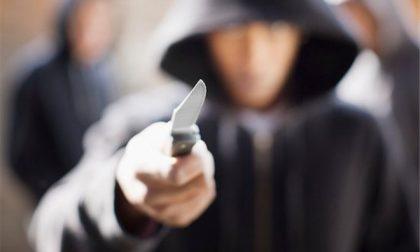 Rapina in banca a Casalpusterlengo: minacciati con un taglierino
