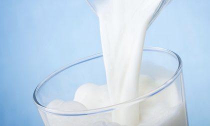 Coldiretti denuncia prezzi e contratti latte da Far West