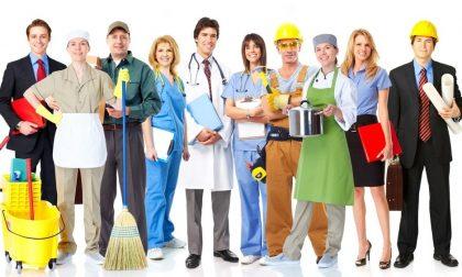 Lavoro Lodi, 1.500 le offerte delle imprese a maggio