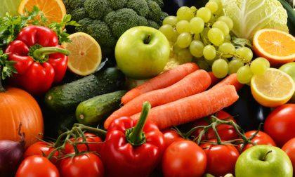 Fiera di Borghetto Lodigiano ospita le eccellenze del farmers' market