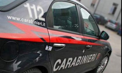 Blitz dei carabinieri e dei vigili nel bosco della droga