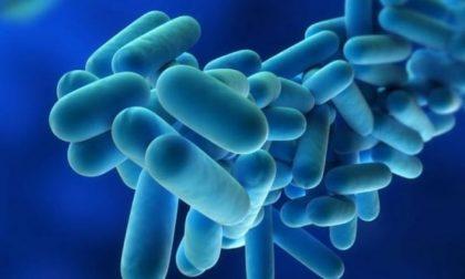 Legionella in Lombardia, morto un anziano