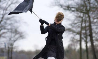 In arrivo vento forte: l'allerta della Protezione civile