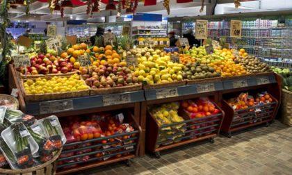 U2 Supermercato controcorrente a Zelo Buon Persico