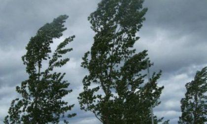 Allerta meteo per rischio vento forte