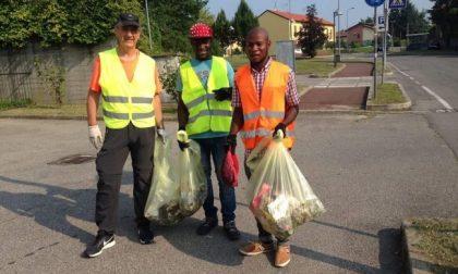 """""""No profughi per curare il verde"""", battaglia in Regione"""