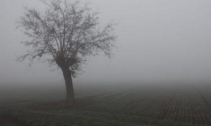 Nebbie e foschie nel primo weekend di dicembre PREVISIONI METEO