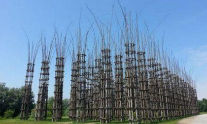 Cattedrale Vegetale, la perizia rileva criticità di progettazione e di realizzazione