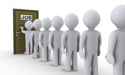 Dote Unica Lavoro: l'evento il 13 febbraio 2019 per i disoccupati di Lodi