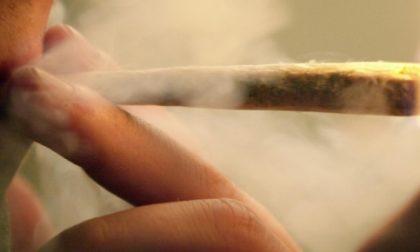 Alla guida sotto effetto di droga: 23enne coinvolto in un'incidente a Casale