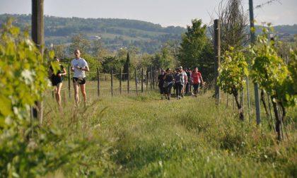 Marcia dei Sette Castelli Gazzolesi: torna l'evento che piace ai Lodigiani