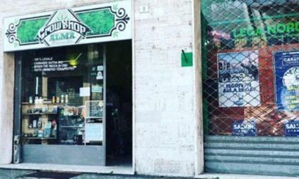 Cannabis light illegale: la Cassazione dice stop alla vendita