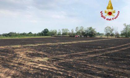 Incendio a Graffignana, 9 ettari di terreno carbonizzati