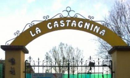 Canile della Castagnina in ginocchio dopo la tromba d'aria: si cerca aiuto per i cani