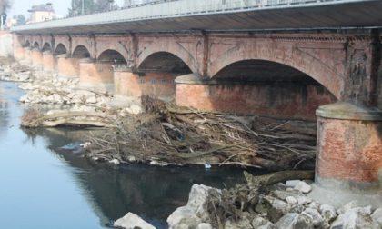 Rinviata la rimozione di tronchi e detritisotto il Ponte sull'Adda