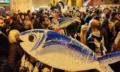 Le Sardine arrivano a Lodi: non scendono in piazza (per ora), ma si fanno sentire