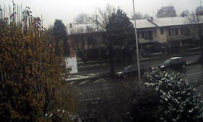 Neve nella bassa pianura della Lombardia SITUAZIONE WEBCAM