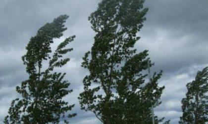 Il forte vento ha portato qualcosa di buono: calano le polveri sottili a Lodi