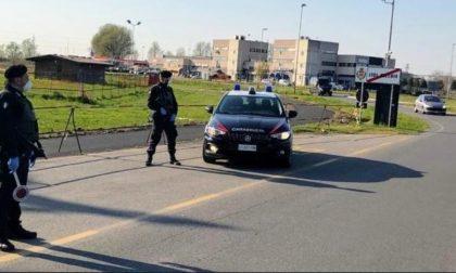 Prende a bastonate un ciclista e gli tira un pugno dopo una lite: denunciato autista violento