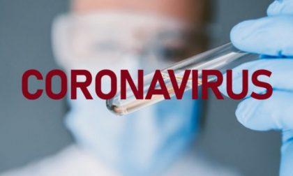 Coronavirus, 3.271 positivi: la situazione a Lodi e provincia lunedì 11 maggio 2020