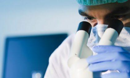 Al via l'indagine di sieroprevalenza nel comune di Lodi TUTTE LE INFORMAZIONI