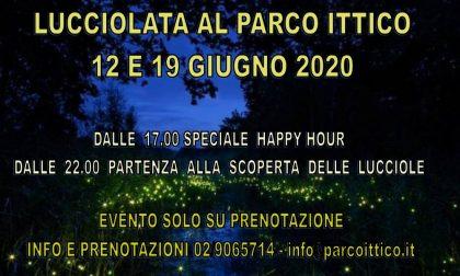 """Un evento da non perdere: la """"lucciolata"""" al parco Ittico Paradiso di Zelo Buon Persico"""