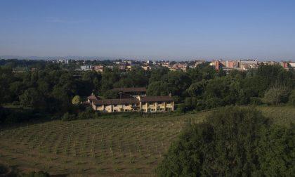 Nuova forestazione nel territorio del Parco Adda Sud a ridosso del centro di Lodi VIDEO