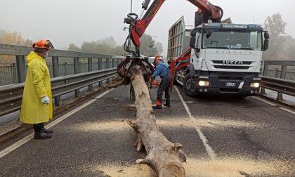 Pulizia piloni ponte sull'Adda, operazioni concluse: ma come stiamo a sicurezza idraulica?
