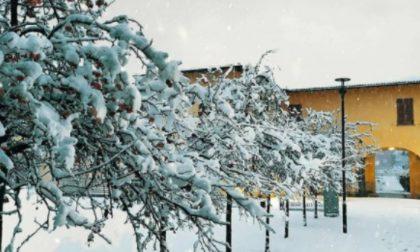 Troppa neve, mezza Tavazzano con Villavesco rimane senza rete e linea telefonica