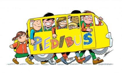 """A Lodi arriva la prima linea """"Pedibus"""" per gli alunni della Don Gnocchi"""