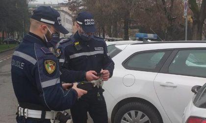 A Casale la Polizia Locale è sempre più hi-tech con i tablet nuovi per multe e controlli