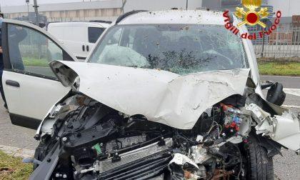 Incidente fatale: 64enne perde il controllo dell'auto, finisce contro un albero e muore
