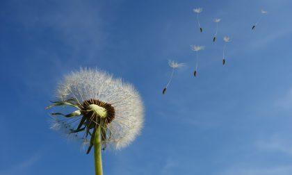 Inizio settimana con cieli azzurri e un po' di vento   Meteo Lombardia