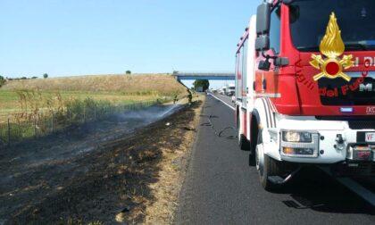 Incendio in autostrada, a fuoco 3.000 mq di sterpaglie sulla A1